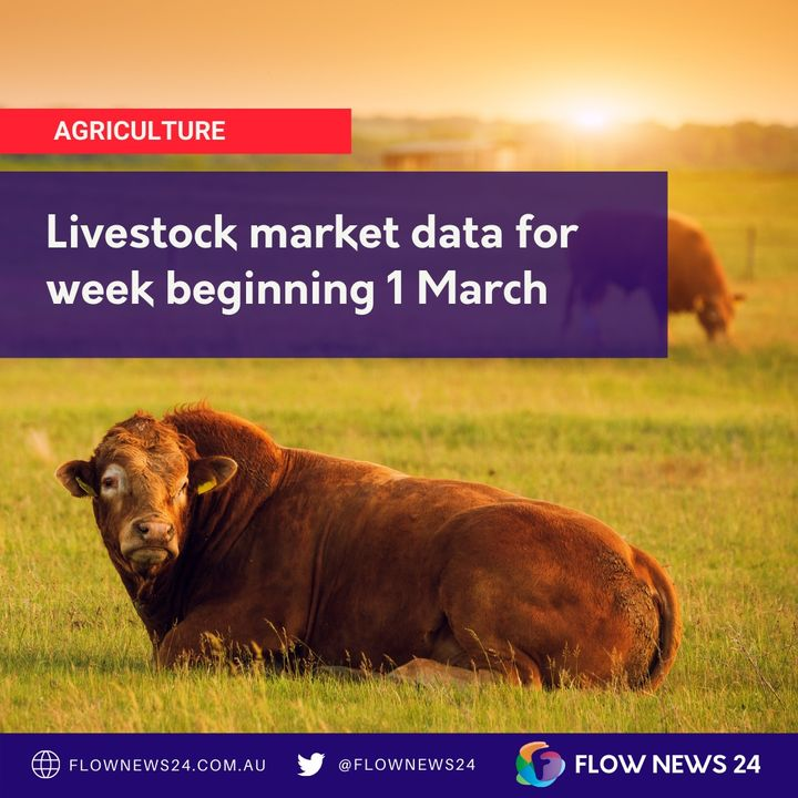 Reviewing the latest Beef, Lamb and Sheep market data from Meat & Livestock Australia