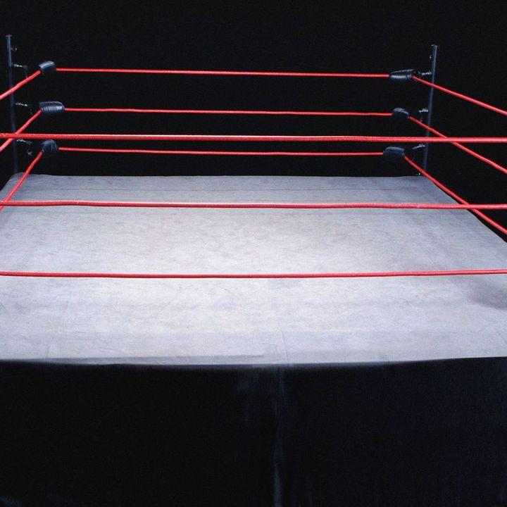 WTF?! Another FN Wrestling Podcast?! Steiner Bros. Vs. Bret & Owen Hart. January 1994 Florence,SC