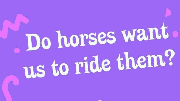 Do horses want us to ride them?