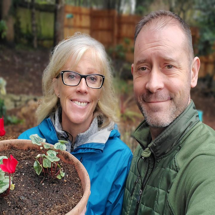 Hardy Cyclamen - A Mini Plant Profile - DIY Garden Minute Ep.180