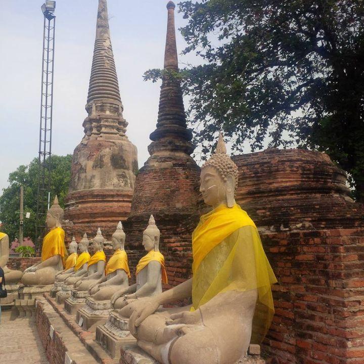 Buddhascool