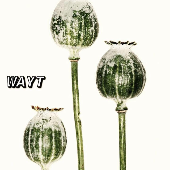 WAYT EP. 144
