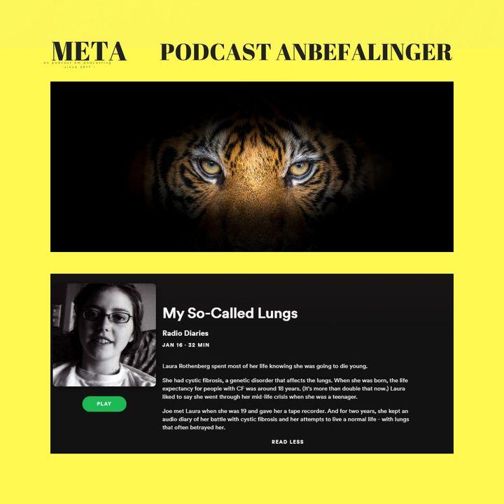 36. En Tiger & Verdens bedste episode [Onsdagsmail #3    #podcastanbefalinger]