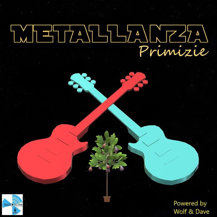 Metallanza Primizie 01.12.2020