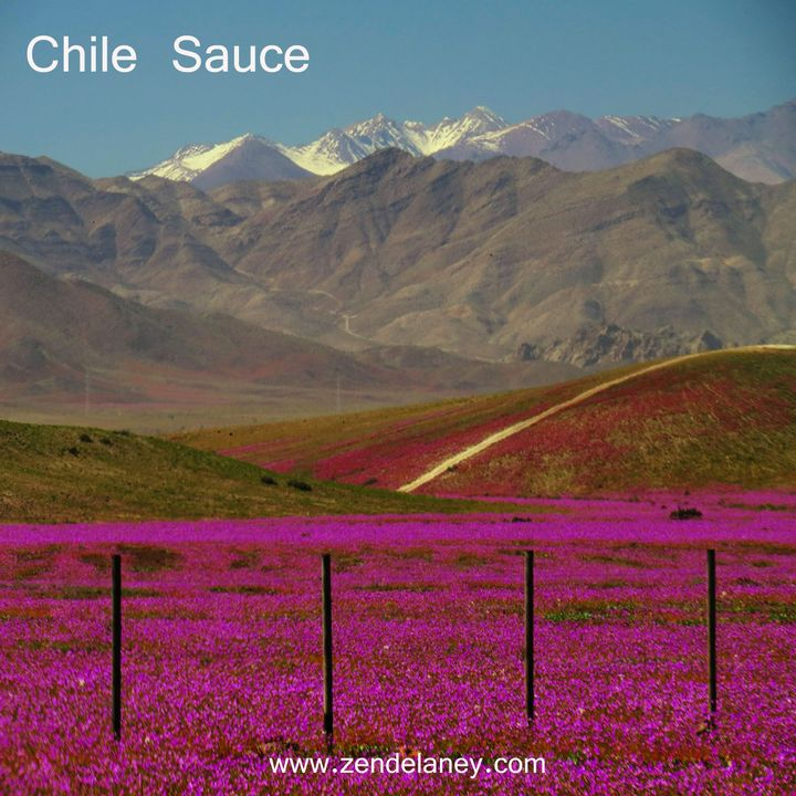 Chile Sauce with Zen Delaney on Lingo Radio Monday 31 August 2020