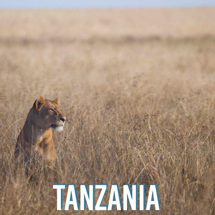 #23 Organizzare un safari perfetto in Tanzania - Intervista a Martina Santamaria