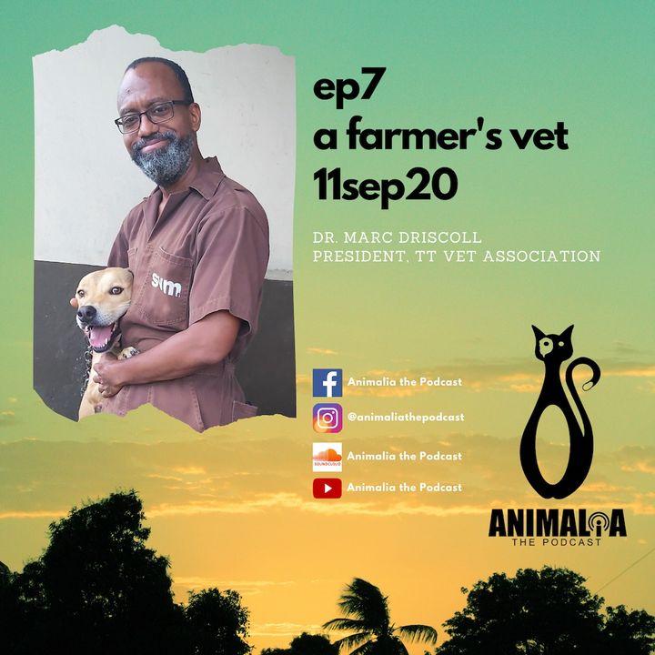ANIMALIA 07 - A Farmer's Vet - 11Sep20
