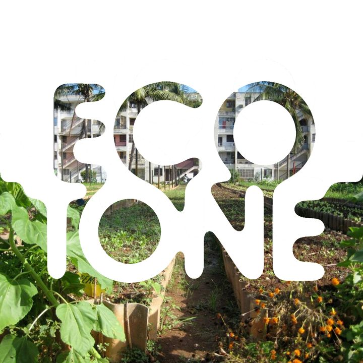 Urban Agroecology with Laney Siegner
