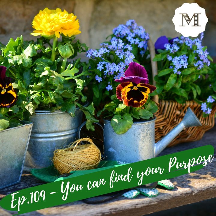 Ep.109 - You can find your Purpose