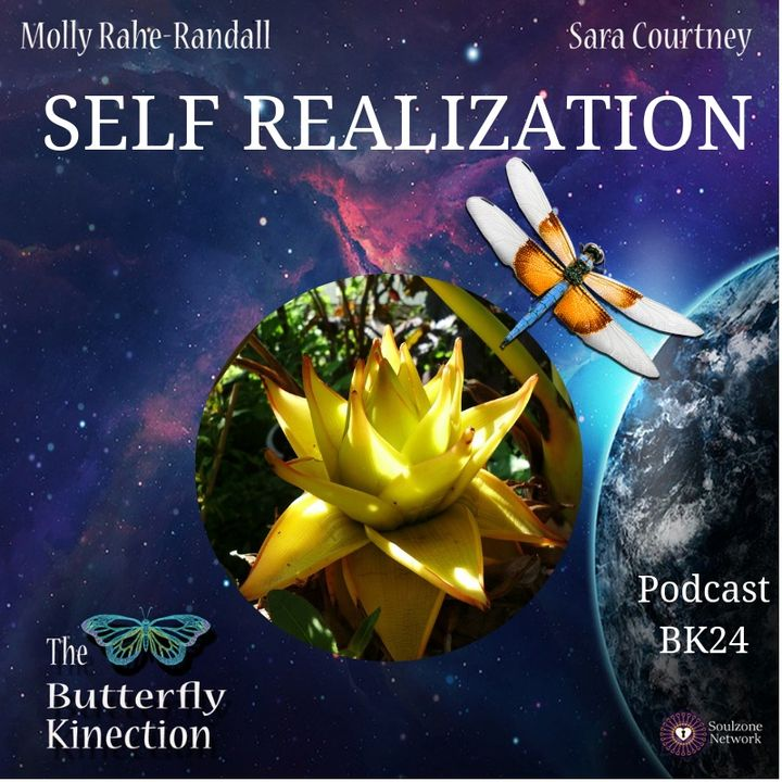 BK24: Self Realization
