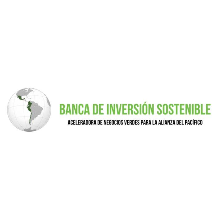 Banca de Inversión Sostenible