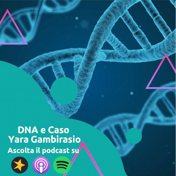 DNA e Caso Yara Gambirasio: E' di Bossetti?