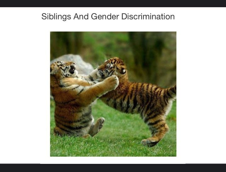 Siblings and gender discrimination