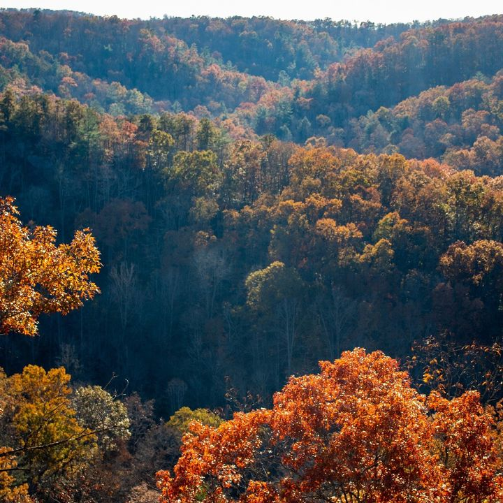 Uncovering Appalachia
