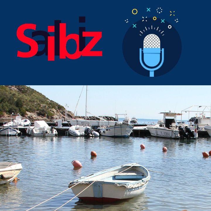 SAILBIZ Cosa cercano gli italiani per la nautica