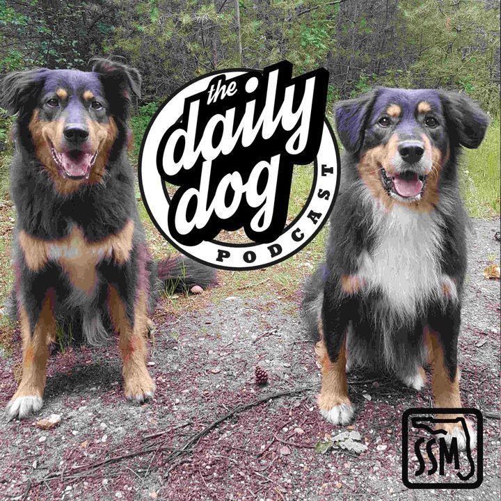 2020-01-16 Dexter & Betty and Liz Evenden