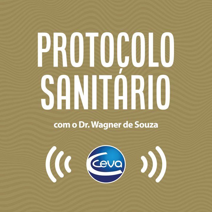 Protocolo Sanitário #01 Direto do campo!