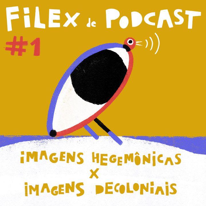 Imagens Hegemônicas X Imagens Decoloniais