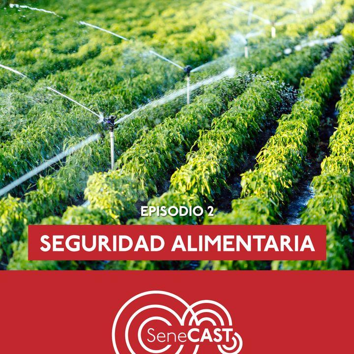 Seguridad alimentaria - Entrevista a Silvia Restrepo