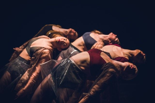 Art Talks About Dancing: Det Fynske Dansekompagni