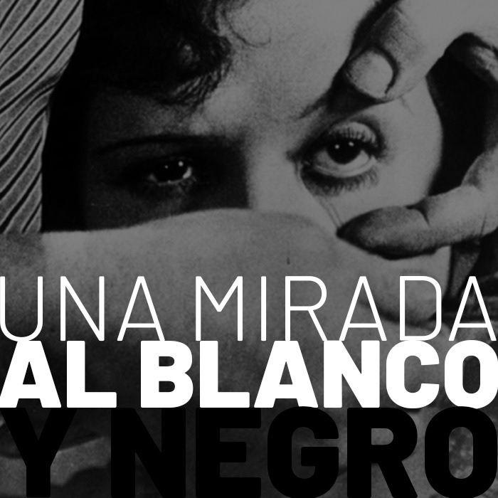 CLOP E46: Una Mirada al Blanco y Negro
