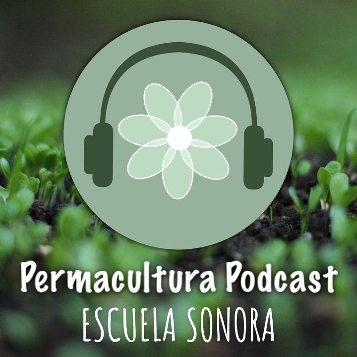 T1E01 - Qué es la Permacultura?