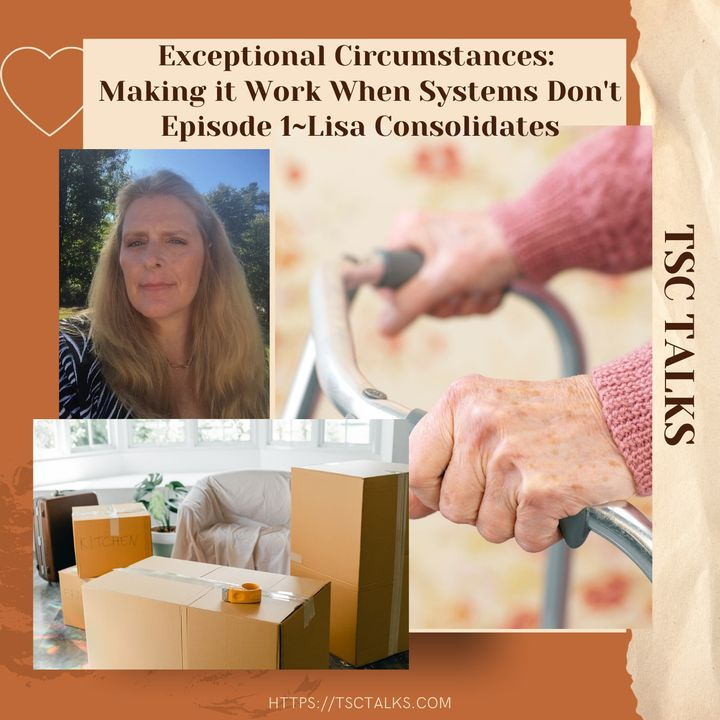 TSC Talks! Exceptional Circumstances, Making it Work When Systems Don't Episode 1~Lisa Consolidates