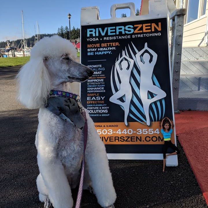 RiversZen Today for Tuesday, February 19th, 2019