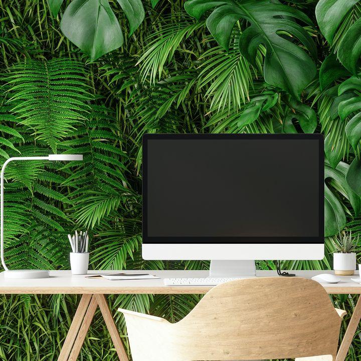 La tendenza della settimana: buoni propositi per il back to work, l'ufficio diventa giungla (di Alessandra Magliaro)