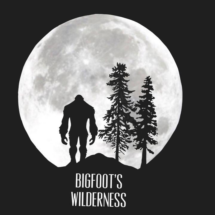 The Hitman And The Bigfoot