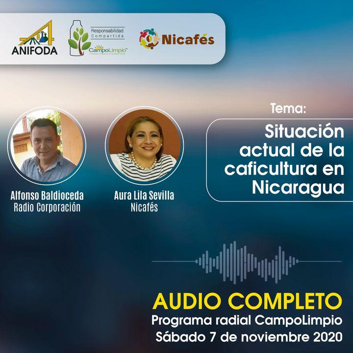 Programa CampoLimpio 7 de noviembre (situación café después de ETA)