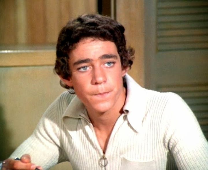 Barry Williams 2017 The Summer Of Me On MeTV