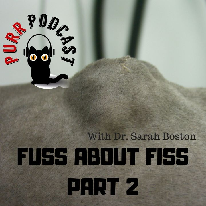 PPC05 Fuss about Fiss 02