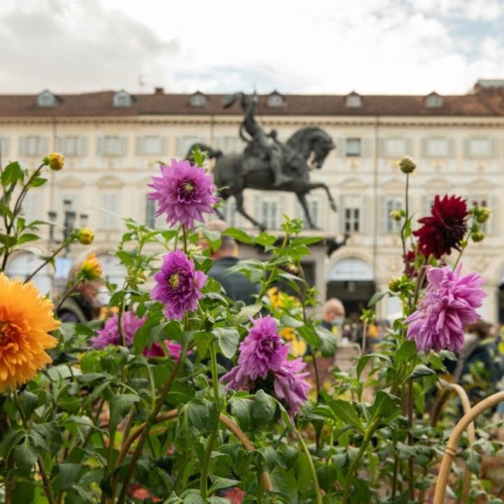 Fa Bene Al Clima - Forestopia - la foresta urbana a Torino