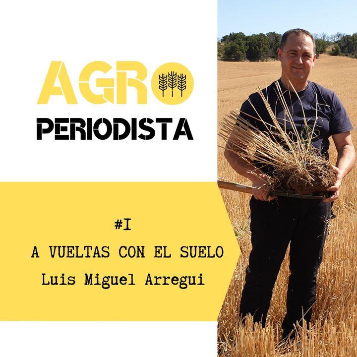#1 A vueltas con el suelo. Entrevista a Luis Miguel Arregui