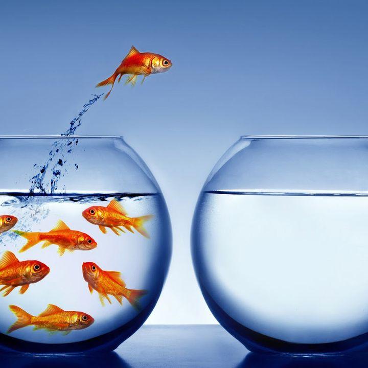 3-Cambiamento - cosa vogliamo e come possiamo ottenerlo