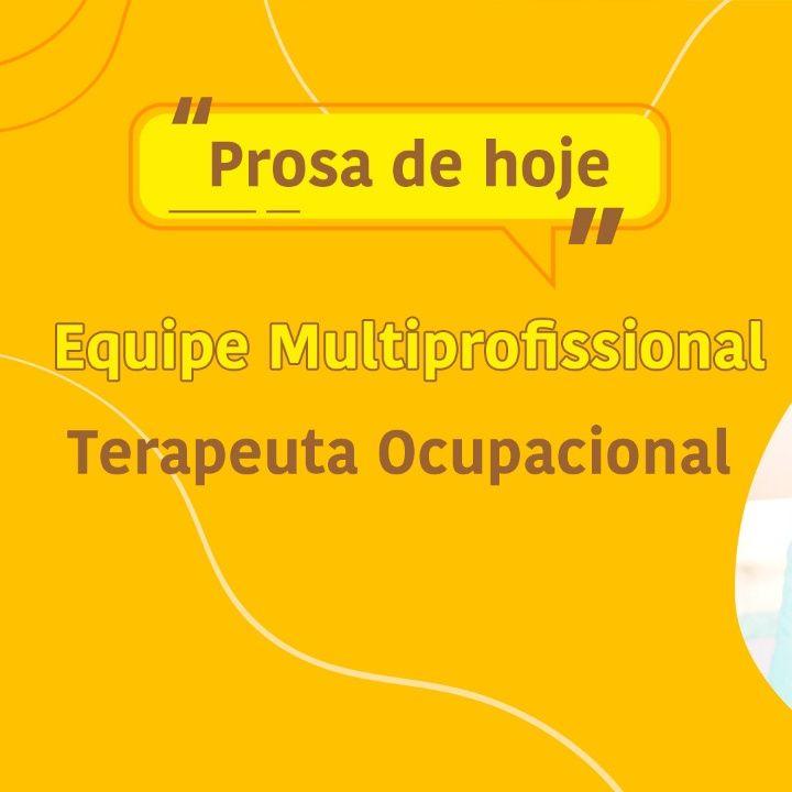 O papel do Terapeuta Ocupacional na Equipe Multiprofissional