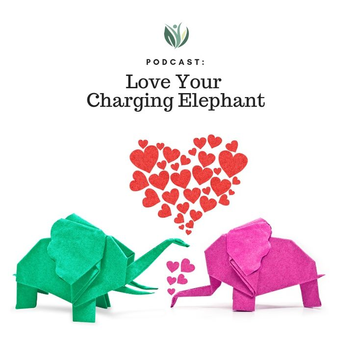 Love Your Charging Elephant, A Journey of Self-Love for Health