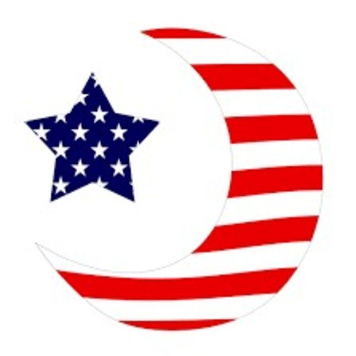 Islamic terror cells targeting the USA