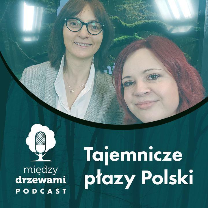 #61 Tajemnicze płazy Polski [dr Renata Krzyściak-Kosińska]