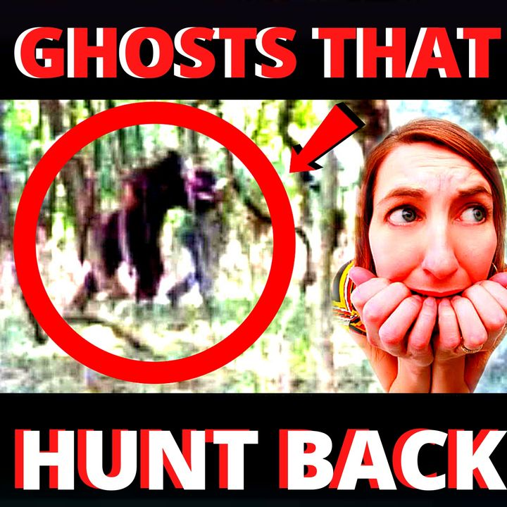 REAL Bigfoot Attacks Astonishing Stories of Threats, Assaults and Abductions