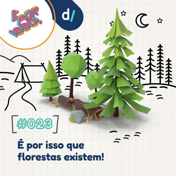 É Por Isso! #23 - É por isso que florestas existem!