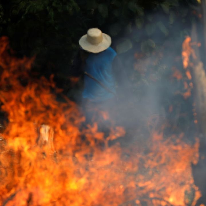 """Amazon rainforest wildfires: """"Our house is burning"""""""