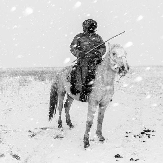 RadioVisione - Cavalieri nella tempesta