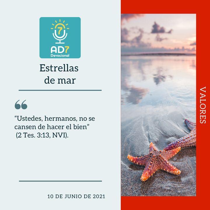 10 de junio - Estrellas de mar - Devocional de Jóvenes - Etiquetas Para Reflexionar