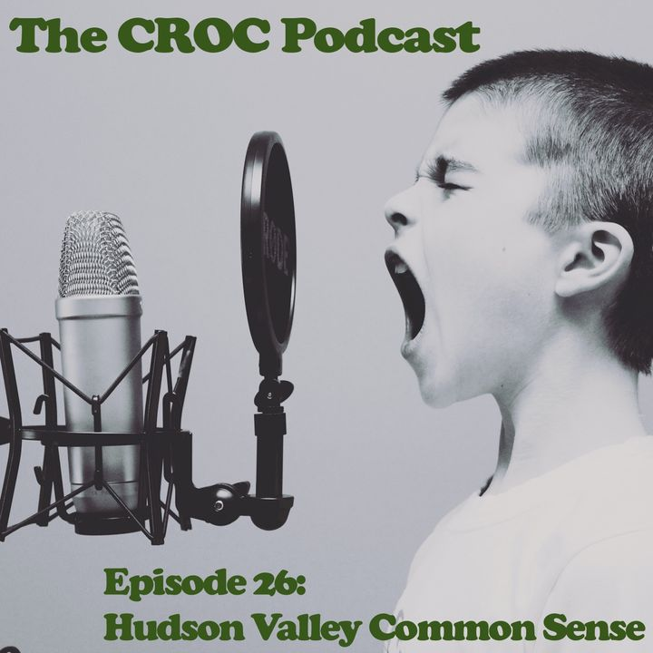 Ep26: Tommy, Can you hear me? - Hudson Valley Common Sense