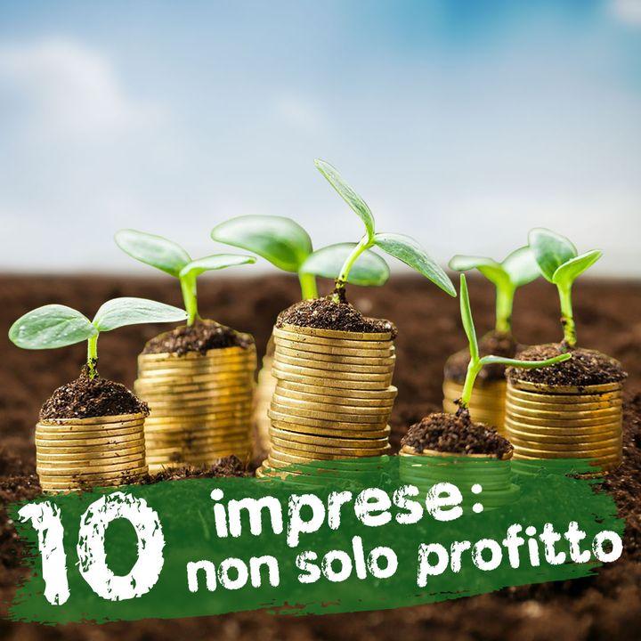 Imprese: non solo profitto