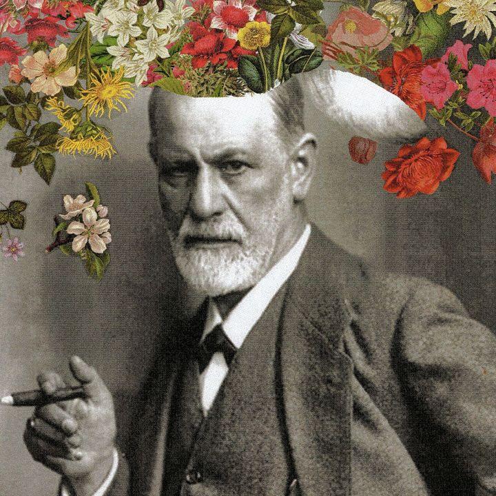 Caro Freud