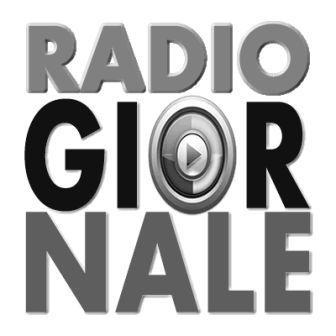Radio Giornale (edizione giornaliera)