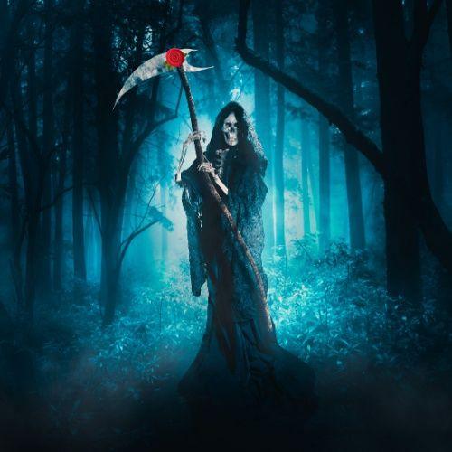 Grim Reaper's Diary